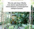 Permakultur Garten Planen Luxus Die 225 Besten Bilder Von Gemüsegarten Und Ernteliebelei
