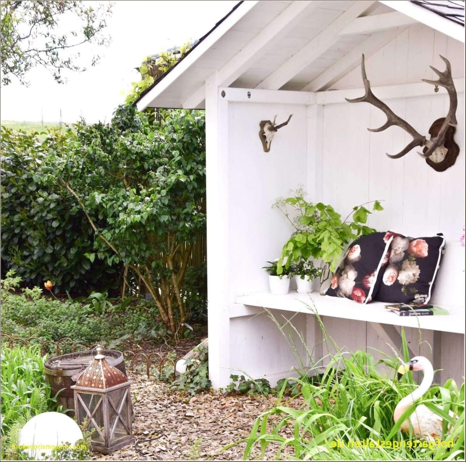 33 Schon Pflanzen Fur Den Garten Luxus Garten Anlegen