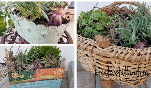 14 Das Beste Von Pflanzgefäße Garten Luxus