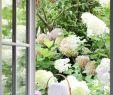 Pflanzgefäße Garten Genial Shabby Chic Gartendeko Mit Shabby Chic Gartenanlage In 46