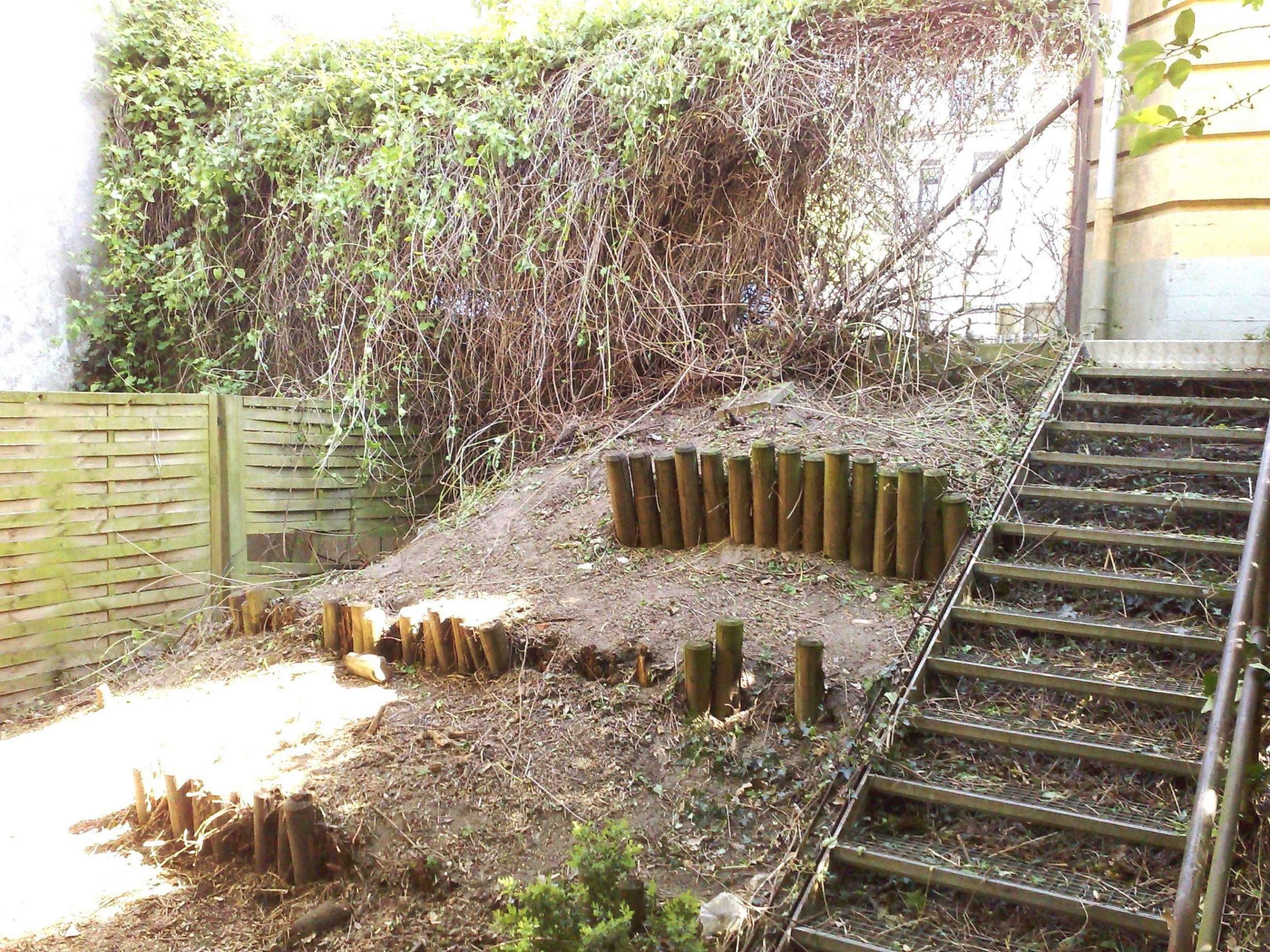 40 neu gestaltungsideen garten pflanzen sichtschutz terrasse kubel pflanzen sichtschutz terrasse kubel
