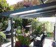 Pflanzkübel Garten Einzigartig Pflanzen Sichtschutz Terrasse Kübel — Temobardz Home Blog