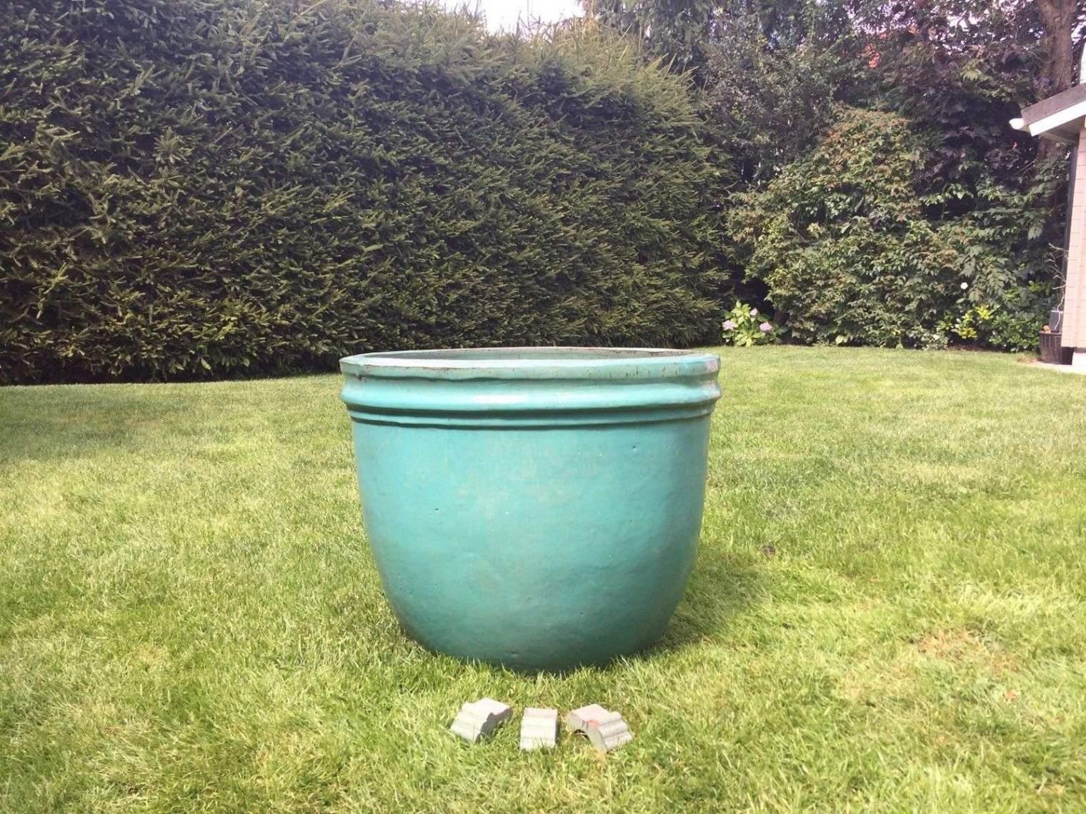 Pflanzkübel Garten Frisch Pflanzen Sichtschutz Terrasse Kübel — Temobardz Home Blog