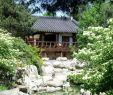 Pflegeleichte Gärten Beispiele Einzigartig Große Gärten Gestalten — Temobardz Home Blog