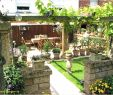Pflegeleichte Gärten Beispiele Elegant Gartengestaltung Großer Garten — Temobardz Home Blog