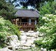 Pflegeleichte Gärten Das Beste Von Große Gärten Gestalten — Temobardz Home Blog