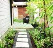 Pflegeleichte Gärten Einzigartig Großen Garten Gestalten — Temobardz Home Blog