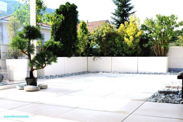 Pflegeleichte Gärten Elegant Großen Garten Gestalten — Temobardz Home Blog