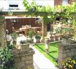 Pflegeleichte Gärten Frisch Gartengestaltung Kleine Garten
