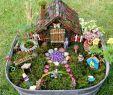 Pflegeleichte Gärten Gestalten Ideen Tipps Und Pflanzpläne Das Beste Von Minigarten Für Feen Mit Bunter Deko Gestalten