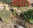 Pflegeleichte Gärten Gestalten Ideen Tipps Und Pflanzpläne Luxus Gartengestaltung Mit Steinen Ideen Tipps Deko