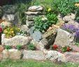 Pflegeleichte Gärten Gestalten Ideen Tipps Und Pflanzpläne Luxus Steingarten Anlegen Pflanzen Terrassierte Lage