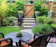 Pflegeleichte Gärten Neu Gartengestaltung Großer Garten — Temobardz Home Blog