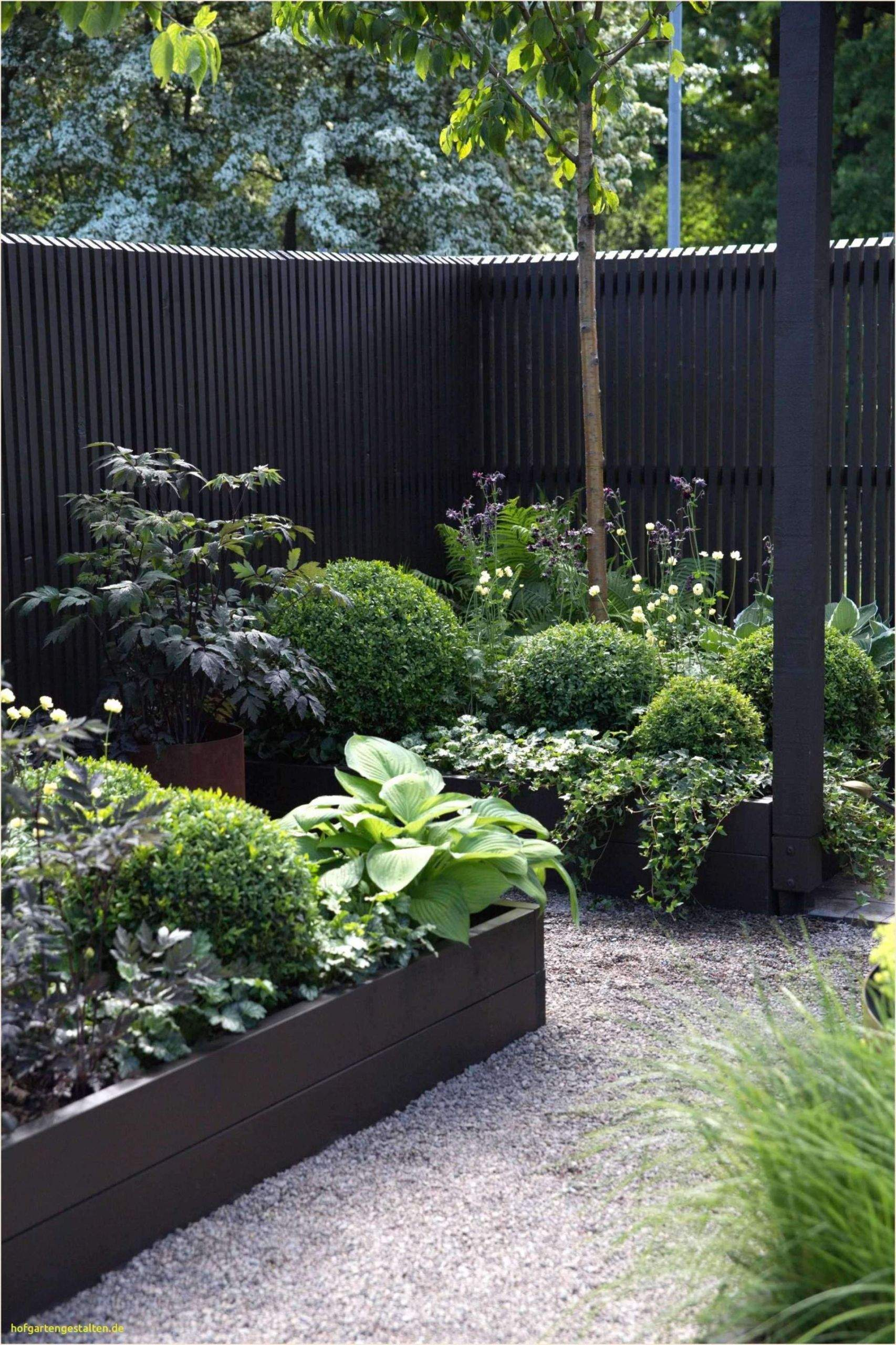 Pflegeleichter Garten Bilder Genial 32 Das Beste Von ...