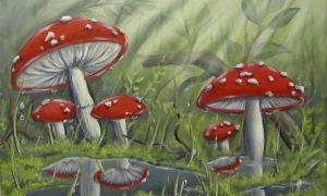 34 Neu Pilze Im Garten Bilder Inspirierend