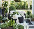 Pinterest Garten Das Beste Von 20 Coole Pinterest Gartenideen Neuesten Trends