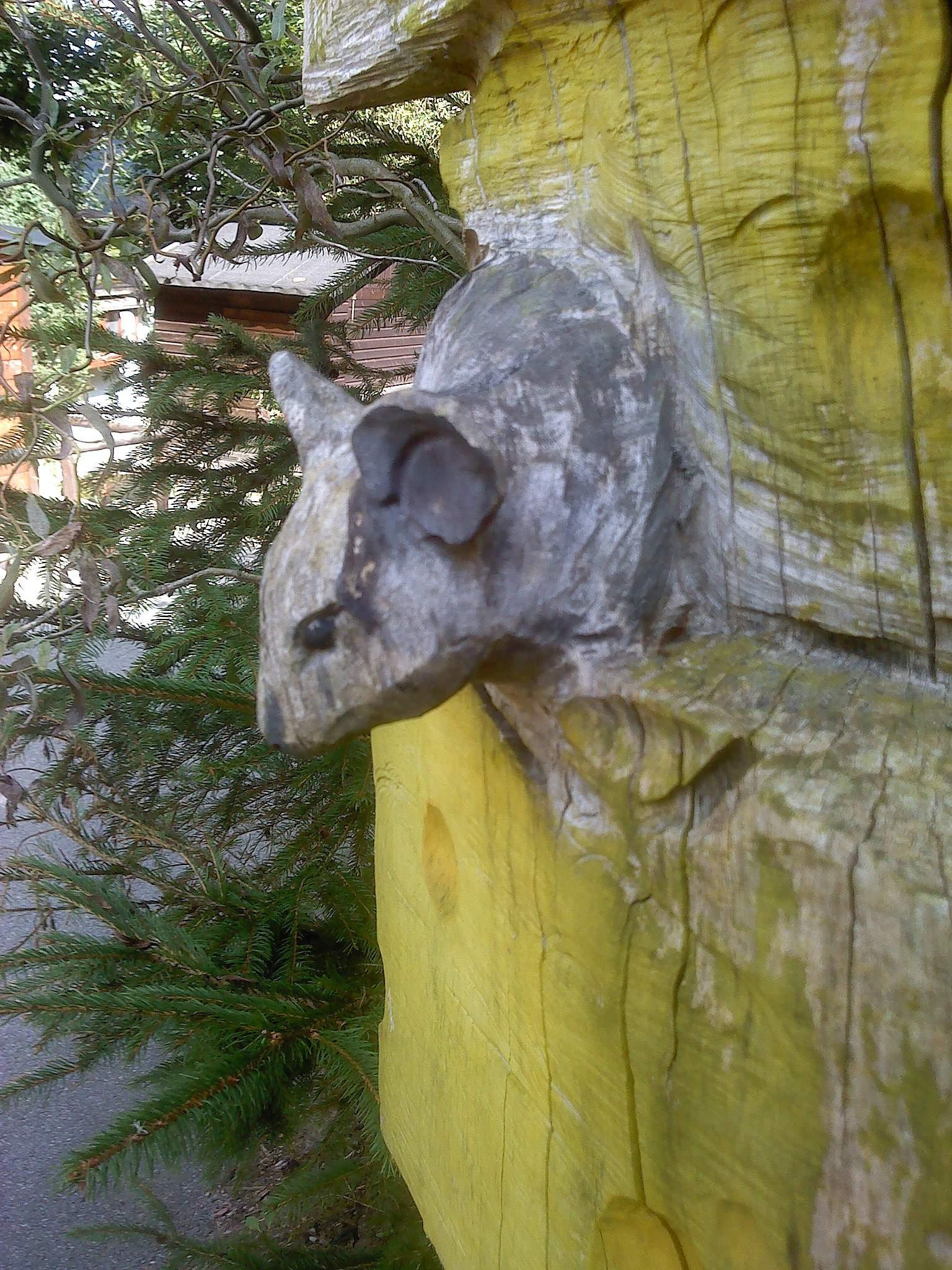 Zoo der Minis aue 2012 09 08 ama fec 11
