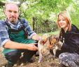 Ratten Im Garten Löcher Neu Botanischer Garten In Oldenburg Kampf Gegen Rattenplage