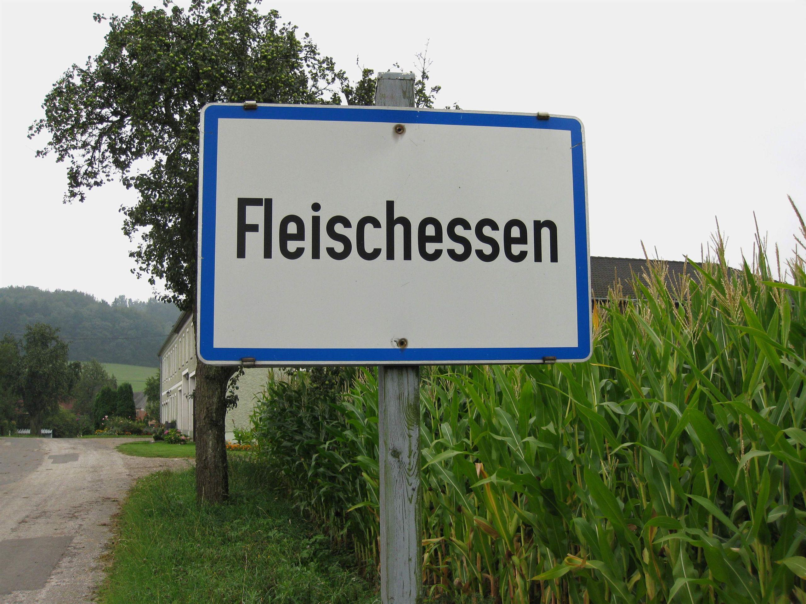 Fleischessen Ortstafel 2009 08