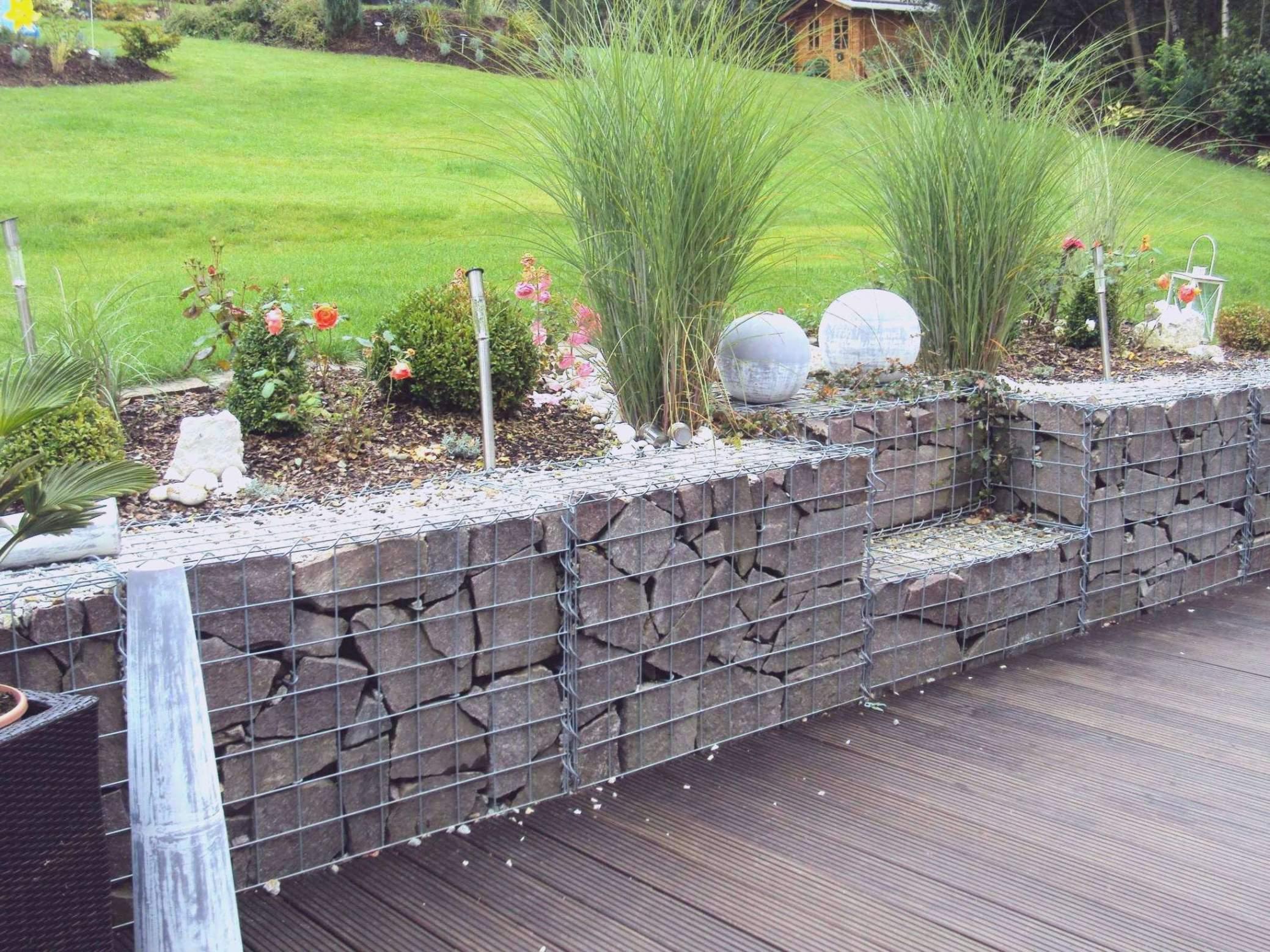 sichtschutz garten ideen pflanzen einzigartig inspirierend terrasse garten sichtschutz pflanzen garten sichtschutz pflanzen