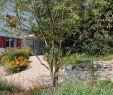 Regentonne Garten Das Beste Von Kobelgartengestaltung Kobelgarten Gartengestaltung Gardening