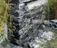Regenwasserspeicher Garten Genial Die 328 Besten Bilder Zu Gartentraum