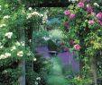 Romantischer Garten Elegant 48 Gardening 1