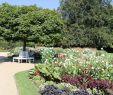 Rundbank Garten Neu Rundbank Im Botanischen Garten Gütersloh