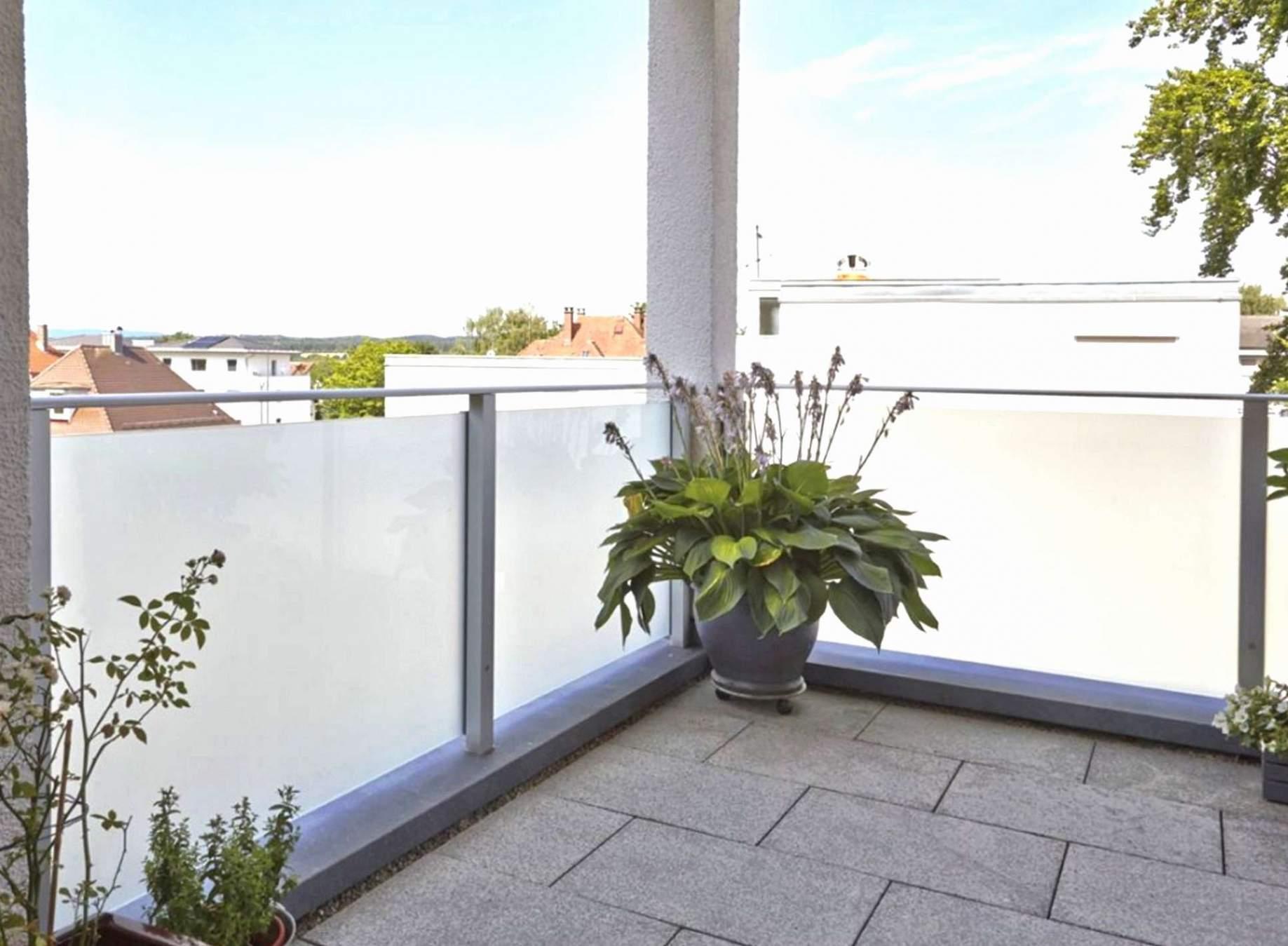 45 luxus sichtschutz ideen bilder hohe pflanzen als sichtschutz hohe pflanzen als sichtschutz
