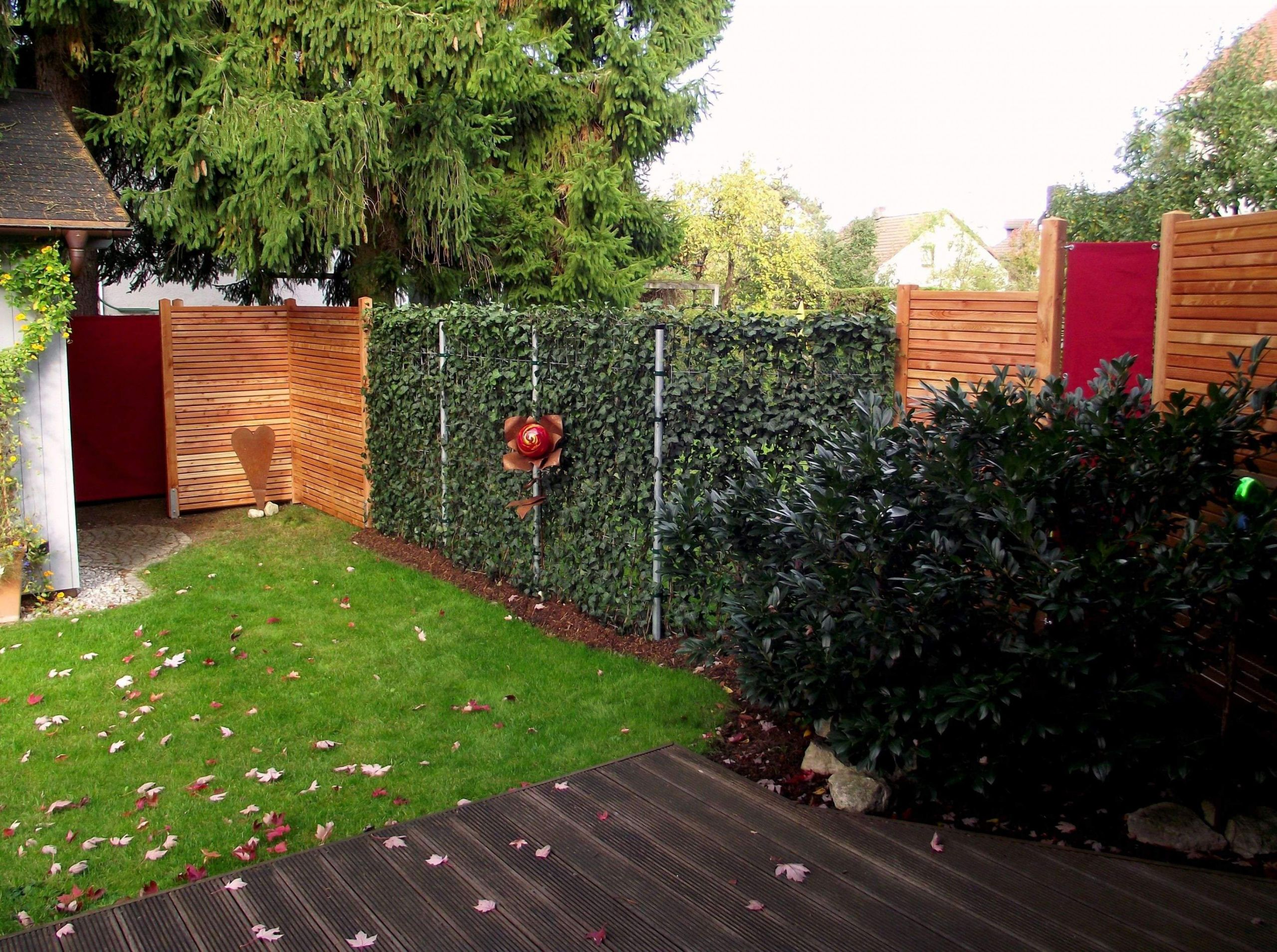 35 design fur terrasse sichtschutz pflanzen hohe pflanzen als sichtschutz hohe pflanzen als sichtschutz