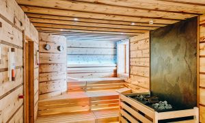 25 Neu Sauna Mit Holzofen Im Garten Frisch