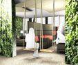 Schaukelgestell Garten Reizend ✅ B4cf61f9f2 21 Of Schaukeln January 2020