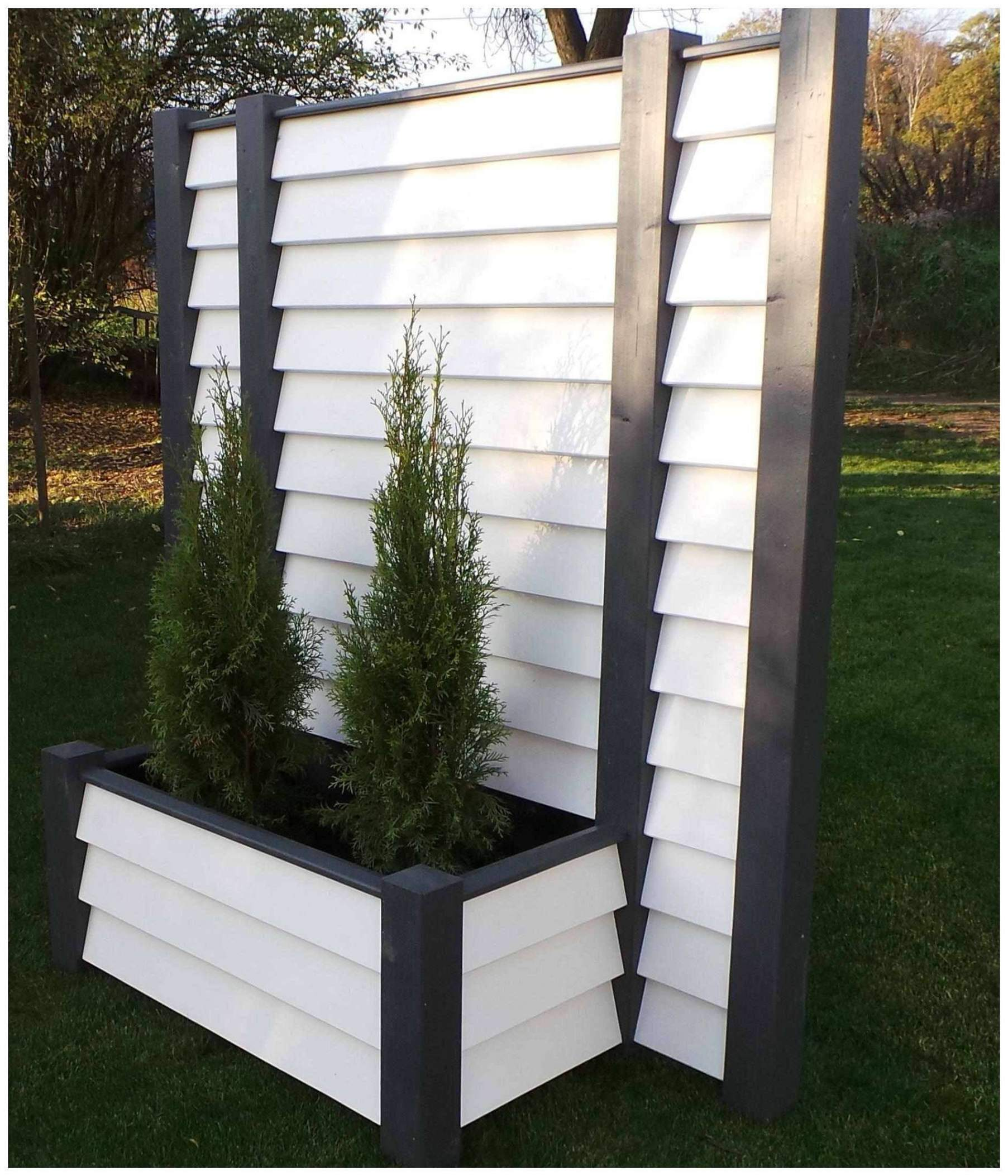 schaukel fur balkon showdenota pflanzen als sichtschutz im kubel pflanzen als sichtschutz im kubel