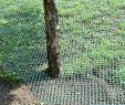 Schutznetz Garten Elegant Securatek