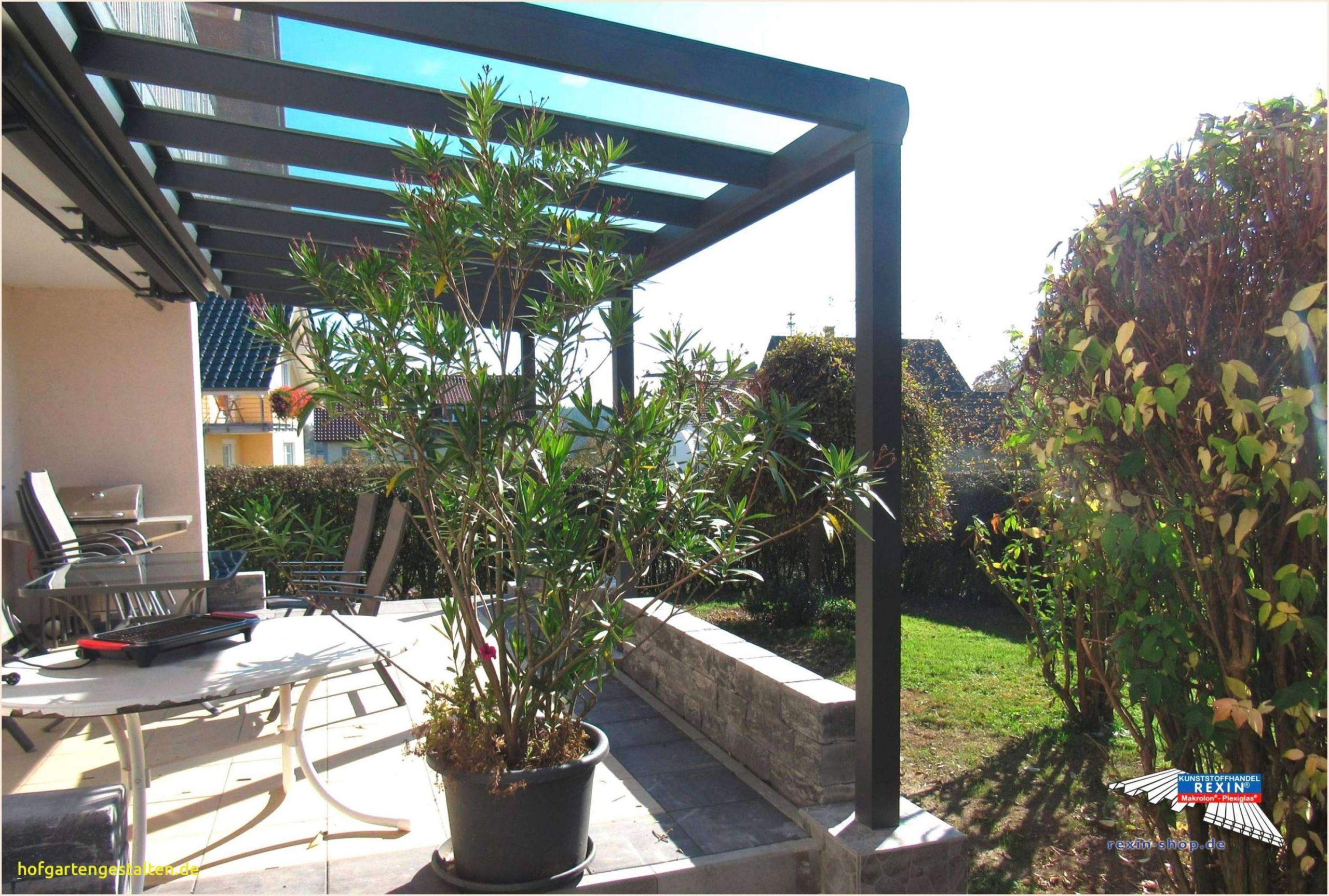 Schwimmbad Für Garten Reizend Zimmerpflanzen Groß Modern — Temobardz Home Blog