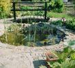 Schwimmteich Garten Das Beste Von Brücke über Unseren Gartenteich Bauanleitung Zum
