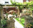 Sehr Kleiner Garten Ideen Inspirierend Kleinen Garten Gestalten — Temobardz Home Blog