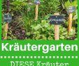 Selbst ist Der Mann Garten Genial Kräutergarten Anlegen