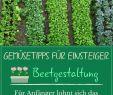 Selbstversorger Garten Anlegen Genial Gemüsebau 10 Tipps Für Anfänger Gemüsegarten Anfänger