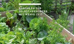 36 Luxus Selbstversorger Garten Elegant