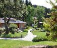 Selbstversorger Garten Luxus Bergfex Sehenswürdigkeiten Bonsaimuseum Seeboden Am