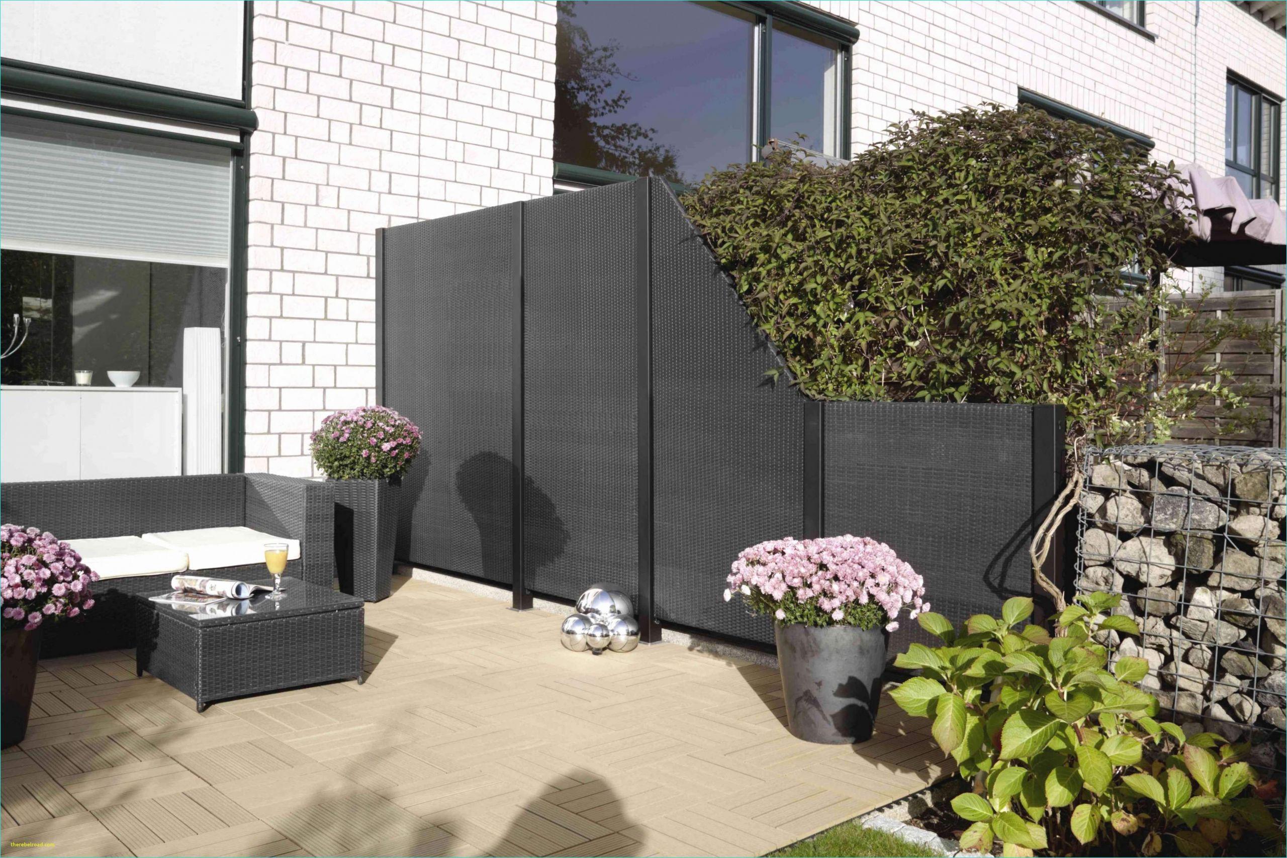 42 schon terrasse pflanzen sichtschutz stock sichtschutz pflanzen terrasse sichtschutz pflanzen terrasse