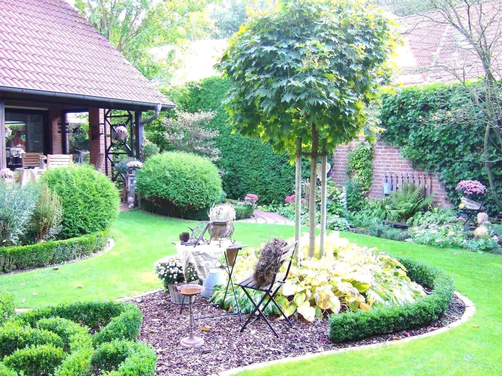 34 Elegant Sichtschutz Kleiner Garten Inspirierend Garten Anlegen