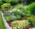 Sitzecke Garten Einzigartig Gartengestaltung Bilder Sitzecke