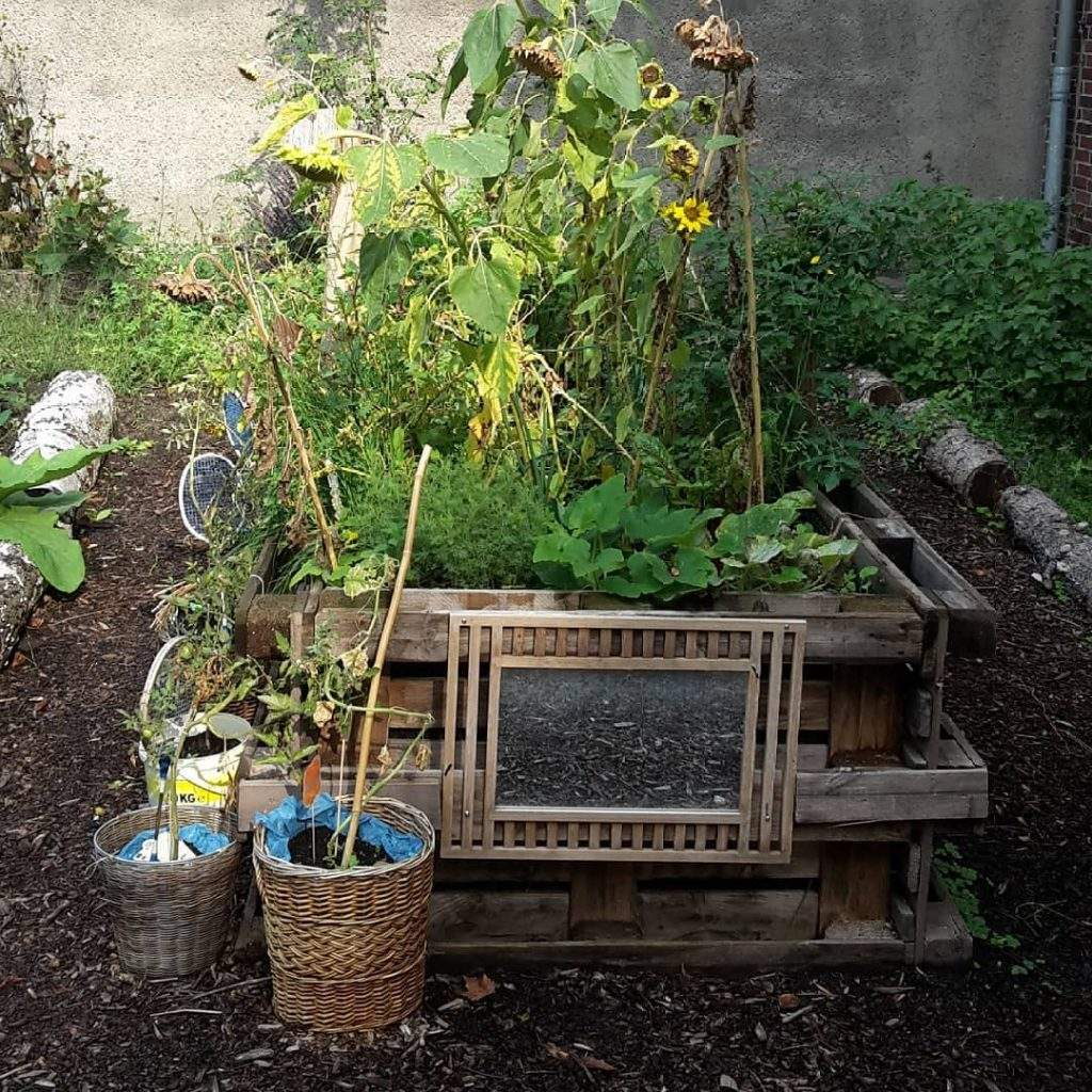 Anbindest Be Hash Tags Deskgram Holzpaletten Im Garten 1024x1024
