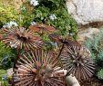 Solar Laterne Garten Luxus 35 Einzigartig Gartenlaterne Rost