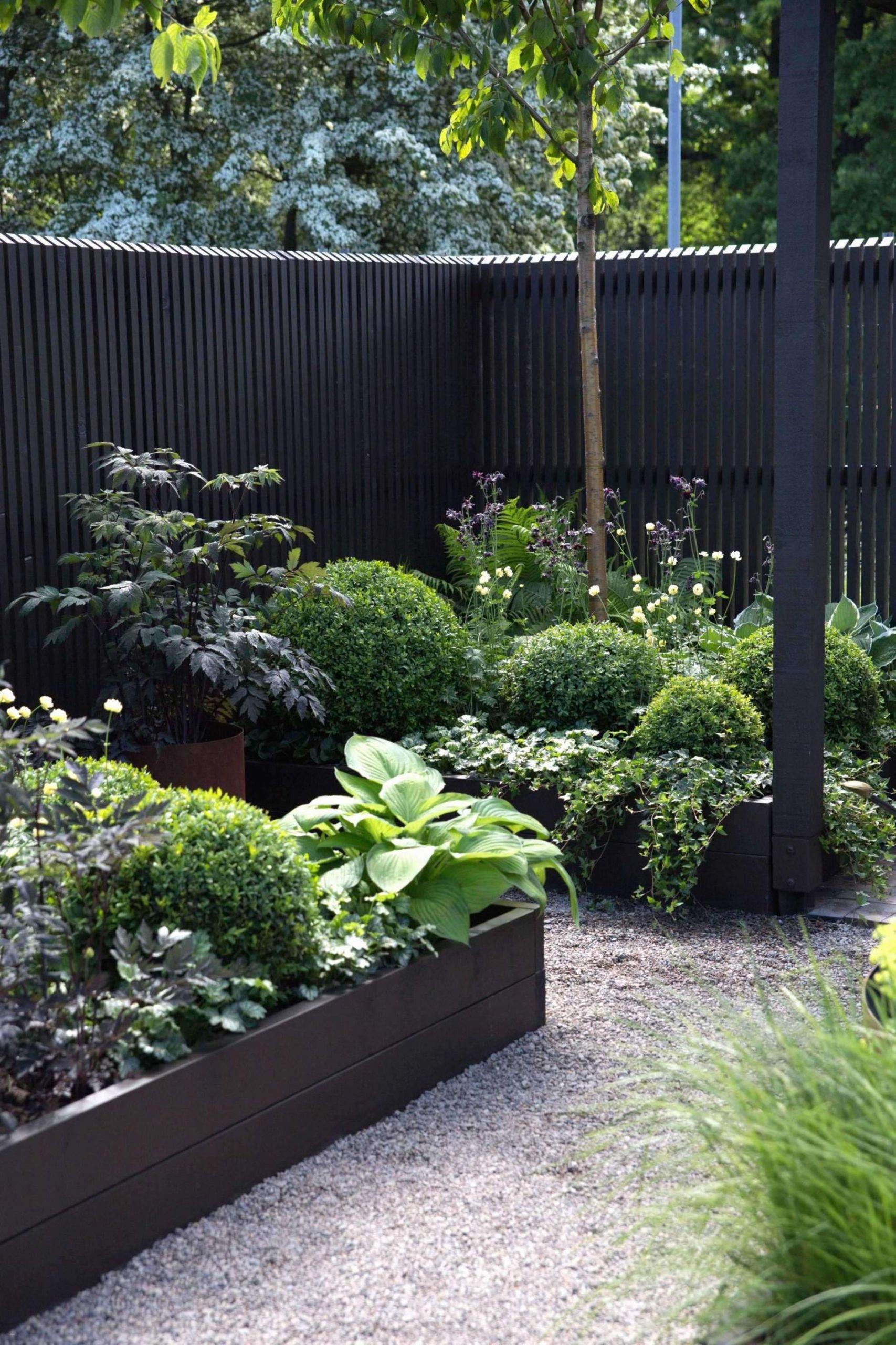 Solaranlage Für Garten Neu Winterharte Gräser Garten — Temobardz Home Blog