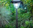 Solarlampen Garten Das Beste Von Moderne solarleuchte Classic Light Von Esotec Schwarz