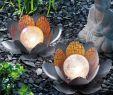 Solarstrahler Garten Schön Bezauberndes solar Lotusblüten Duett