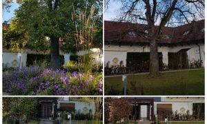 35 Genial sommer Garten Inspirierend